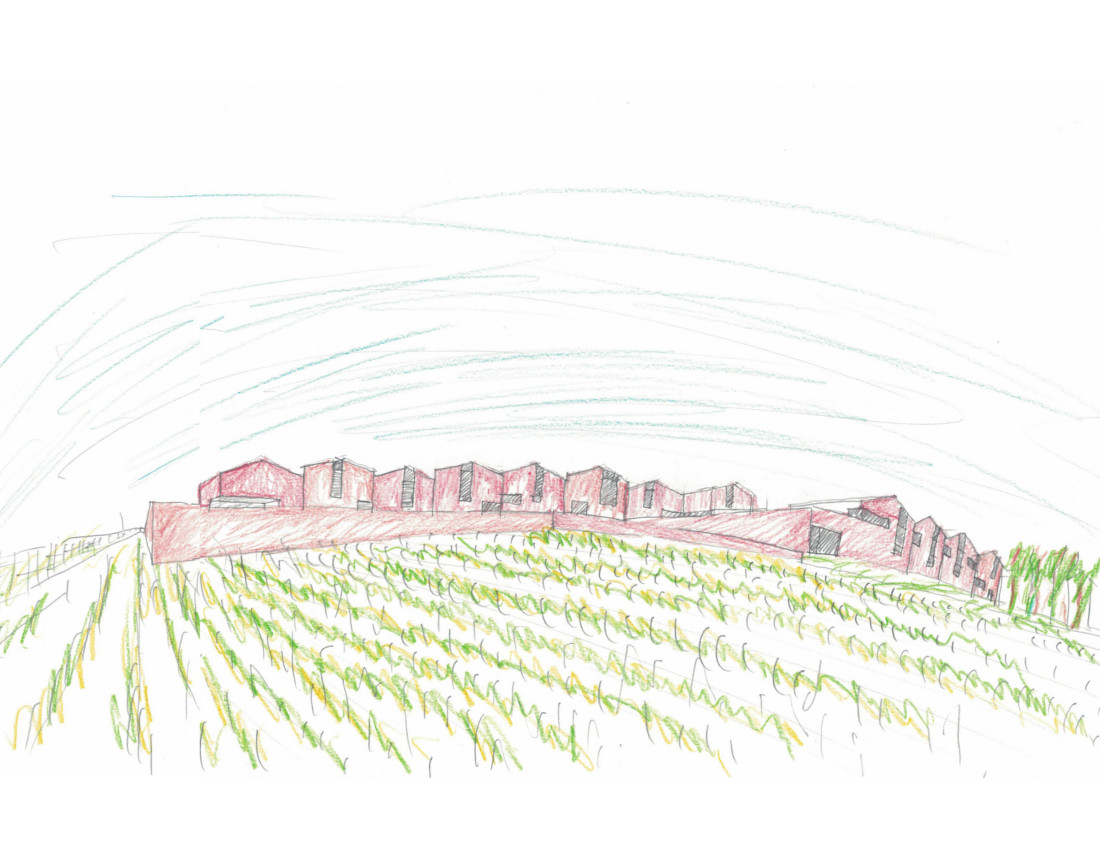 Winery in Douro - Architecture drawing